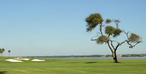 Daufuskie Island Golf Real Estate
