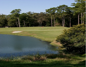 Belfair Plantation Golf Courses