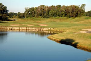 Old Carolina Golf Club homes for sale