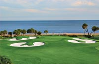 Palmetto Dunes Golf & Amenities