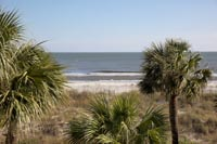 Palmetto Dunes Oceanfront homes & villas