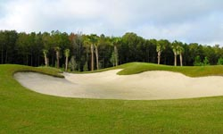 Sun City Hilton Head Golf Course Homes for Sale
